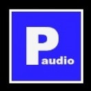 AudioParking