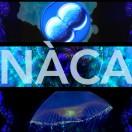 Nacamusic's Avatar