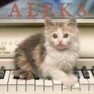 AleksCat