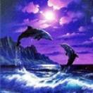 TwoDolphins