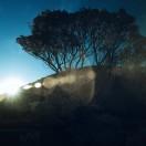 RayGallery's Avatar