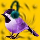 NearBird_Rec