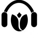 soundofarose