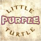 LittlePurpleTurtle