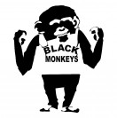 Black_Monkeys
