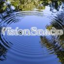 VisionSnacks's Avatar