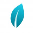 blue_leaf's Avatar