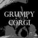 GrumpyCorgi