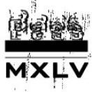 Bass_MXLV