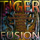 tigerfusion