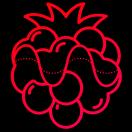 raspberrysounds