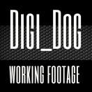 Digi_Dog