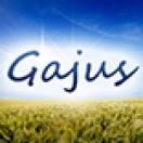 Gajus_Images