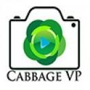 CabbageVP's Avatar