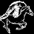 Pegasus_footage