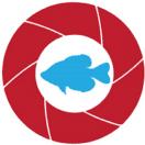 UnderwaterFish