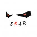 Skar_visual