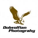 DolwolfianPhotography
