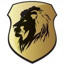 LionVideo79