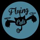 FlyingCats