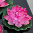 Siddhi_photos's Avatar