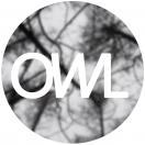 owlvideo
