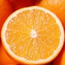 Citrussound