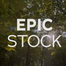 EpicStockFootage's Avatar