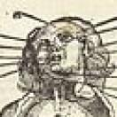 neurochromatic