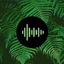 mjpstockmusic's Avatar