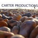 CarterProductions's Avatar