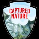 CapturedNature's Avatar