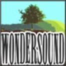 Wondersound
