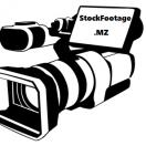 MZstockfootage's Avatar