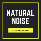 naturalnoise's Avatar